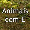 Animais com E