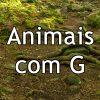 Animais com G