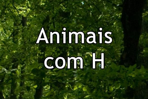Animais com H