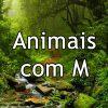 Animais com M