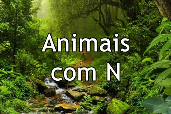 Animais com N
