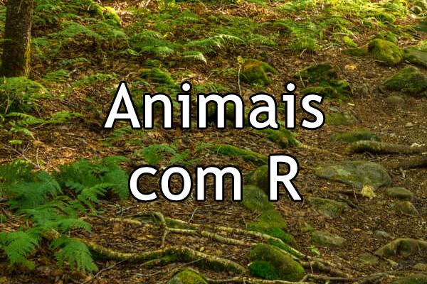 Animais com R