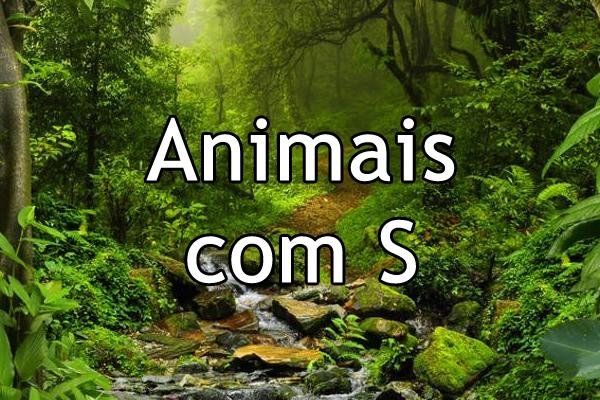 Animais com S