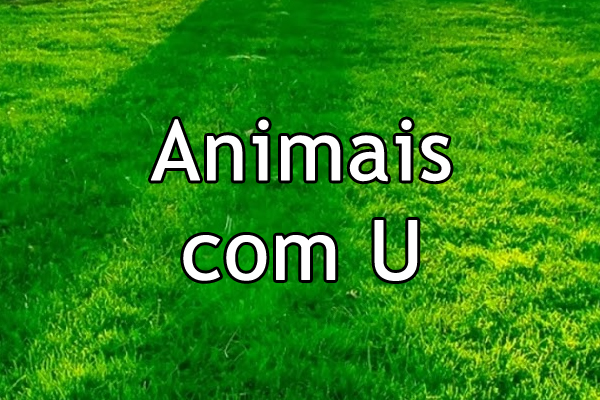 Animais com U