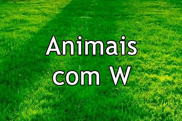 Animais com W