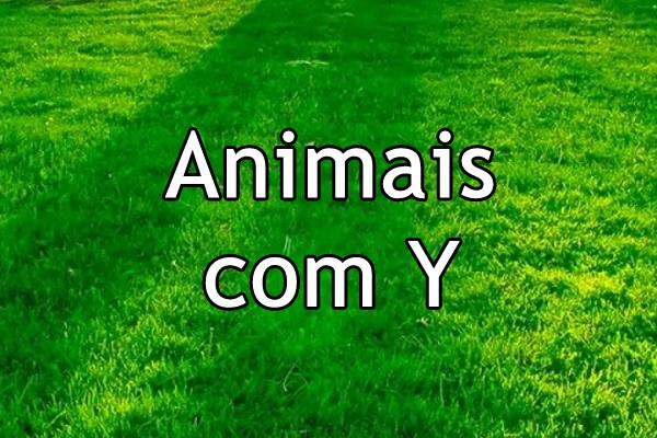 Animais com Y