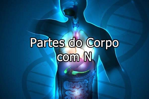 Partes do Corpo com N