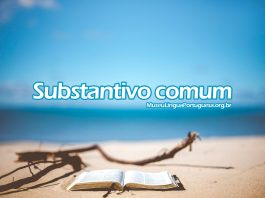 Substantivo comum