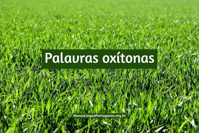 Palavras oxítonas