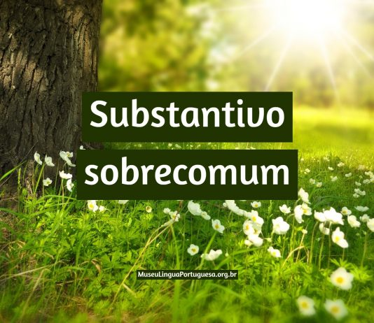Substantivo sobrecomum